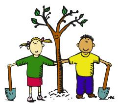 Вирощування саджанців фруктових дерев